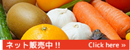 VegePowder健康の源ベジパウダー 大好評ネット販売!! Click here ≫