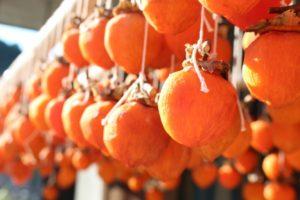 販売 渋柿